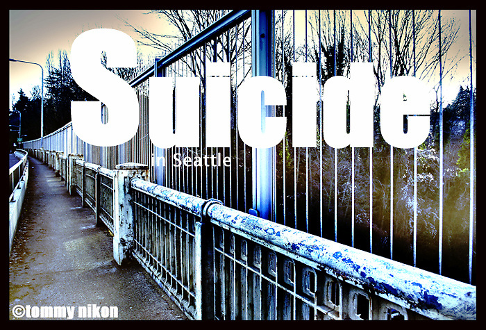 """Aurora Bridge in Seattle, a """"popular"""" suicide spot.  Retrofitted with anti-suicide barriers to impede jumpers."""