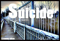 "Aurora Bridge in Seattle, a ""popular"" suicide spot.  Retrofitted with anti-suicide barriers to impede jumpers."