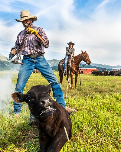 Star Valley Wyoming ranchers Slim and Cidnie Clark.  Branding time.
