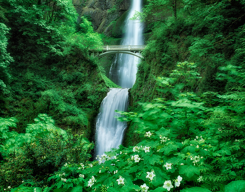 Multnomah Falls in spring. Oregon.