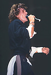 Michael Des Barres