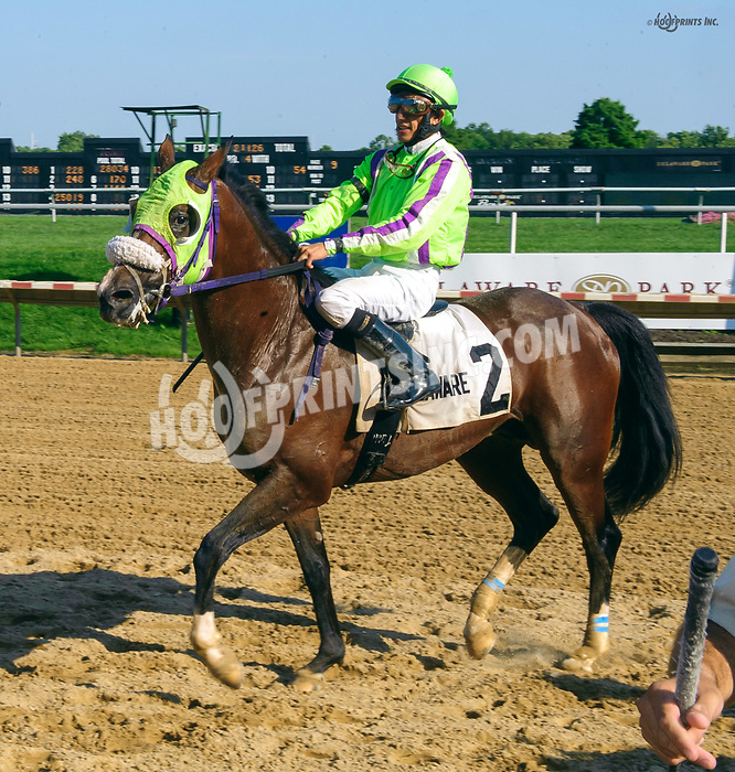 Thess Is Awesome after The Delaware Park Arabian Classic (grade 1) at Delaware Park on 8/19/17