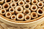 Commercially produced home for Mason Bees.