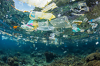 pollution - marine debris of plastic and other wastes, floating over coral reef in Raja Ampat, West Papua, Indonesia, Indo-Pacific Ocean