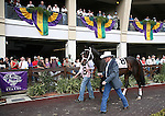 7 February 2009:  Trainer Larry Jones walks Honest Man in the paddock before his win in the Mineshaft Stakes on Risen Star Stakes Day at the Fair Grounds Race Course in New Orleans, Louisiana.