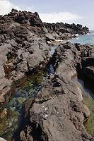 Küste bei Sao Joao auf der Insel Pico, Azoren, Portugal
