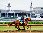April 28, 2021: Hidden Stash, trained by trainer Vicki Oliver, exercises in preparation for the Kentucky Derby at Churchill Downs on April 29, 2021 in Louisville, Kentucky. Scott Serio/Eclipse Sportswire/CSM