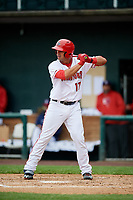 Harrisburg Senators first baseman Drew Ward (17) at bat during the first game of a doubleheader against the New Hampshire Fisher Cats on May 13, 2018 at FNB Field in Harrisburg, Pennsylvania.  New Hampshire defeated Harrisburg 6-1.  (Mike Janes/Four Seam Images)