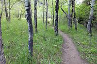 Fern Lake Trailhead, Rocky Mountain National Park