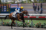 AUG 7,2014:Easter Fever,ridden by Kent Desormeaux,wins the maiden race,1R at Del Mar in Del Mar,CA. Kazushi Ishida/ESW/CSM