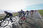 Romain Combaud (FRA) Nippo Delko Provence and Vincenzo Nibali (ITA) Trek-Segafredo in the peloton during Stage 2 of the 78th edition of Paris-Nice 2020, running 166.5km form Chevreuse to Chalette-sur-Loing, France. 9th March 2020.<br /> Picture: ASO/Fabien Boukla | Cyclefile<br /> All photos usage must carry mandatory copyright credit (© Cyclefile | ASO/Fabien Boukla)