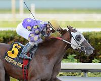 Florida Sire Stakes 2015