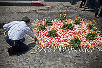 Antigua, Guatemala. Putting the final touches on a small  alfombra (carpet) of roses, rose petals,  and other traditional materials decorating the street in advance of the passage of a procession during Holy Week, La Semana Santa.