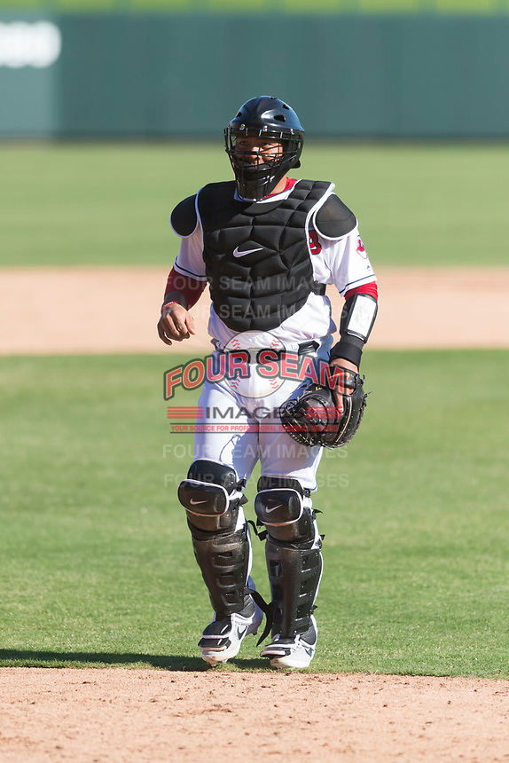Glendale Desert Dogs catcher Li-Jen Chu (2), of the Cleveland Indians organization, during an Arizona Fall League game against the Mesa Solar Sox at Camelback Ranch on October 15, 2018 in Glendale, Arizona. Mesa defeated Glendale 8-0. (Zachary Lucy/Four Seam Images)