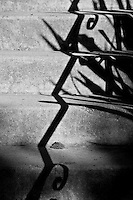 A fine art black-and-white abstract of grey steps crossed with black diagonal shadows of the handrail and nearby grasses.