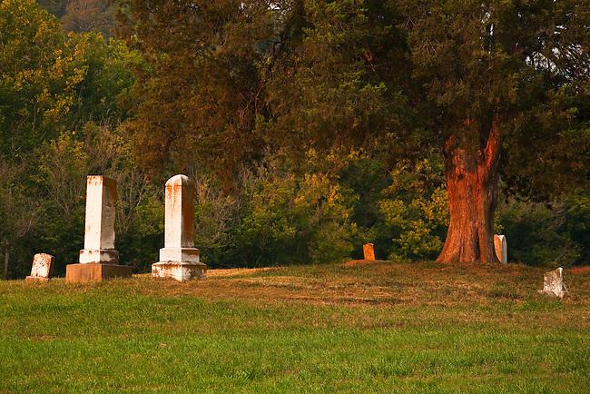 Old family gravesite and cedar, Washington County