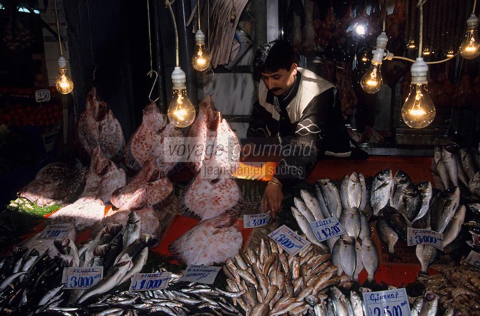 Europe/Turquie/Istanbul : Marché du Cicek Pasagi ou passage des fleurs - Etal de poissons