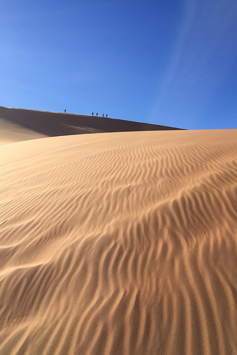 A Group Traverses A Dune In Deadvlei, Sossuvlei.