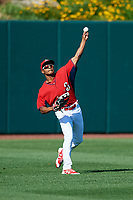 Springfield Cardinals Magneuris Sierra (29) during practice before a game against the Corpus Christi Hooks on May 30, 2017 at Hammons Field in Springfield, Missouri.  Springfield defeated Corpus Christi 4-3.  (Mike Janes/Four Seam Images)