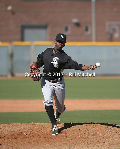 Andre Wheeler - 2017 AIL White Sox (Bill Mitchell)
