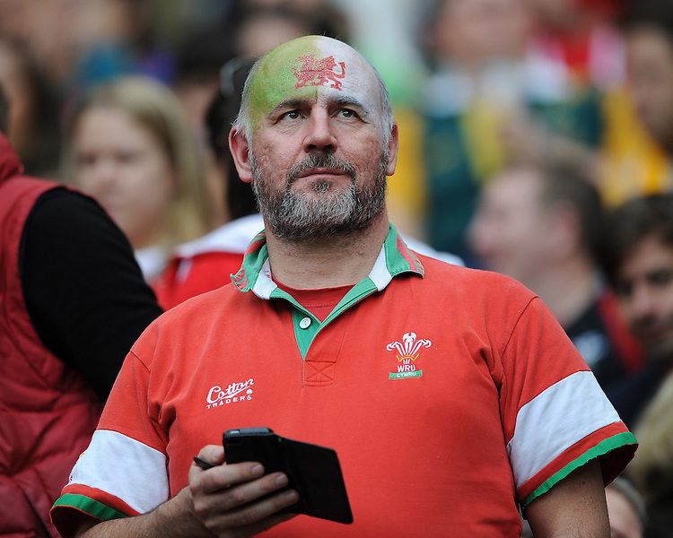 A Welsh fan looks dejected during Match 35 of the Rugby World Cup 2015 between Australia and Wales - 10/10/2015 - Twickenham Stadium, London<br /> Mandatory Credit: Rob Munro/Stewart Communications