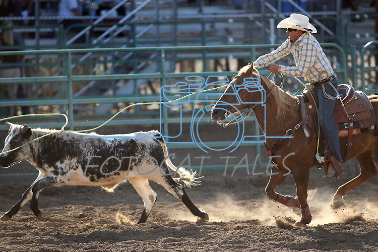 Dan Pacheco competes in the double mugging event at the Minden Ranch Rodeo on Saturday, July 23, 2011, in Gardnerville, Nev. .Photo by Cathleen Allison