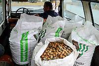 SPAIN Mallorca, Petra, bonany company, processing of almonds  / SPANIEN Mallorca, Petra, Firma bonany, Verarbeitung mallorquinischer Mandeln, Anlieferung frischer Mandeln
