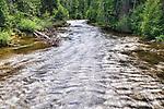 Hamma Hamma River seen from footbridge at Hamma Hamma trailhead.