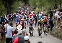 The grupetto up the steepest part of the brutal Mas de la Costa: the final climb towards the finish<br /> <br /> Stage 7: Onda to Mas de la Costa (183km)<br /> La Vuelta 2019<br /> <br /> ©kramon