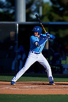 AZL Royals Darryl Collins (21) at bat during an Arizona League game against the AZL Brewers Blue at Surprise Stadium on June 18, 2019 in Surprise, Arizona. AZL Royals defeated AZL Brewers Blue 12-7. (Zachary Lucy/Four Seam Images)