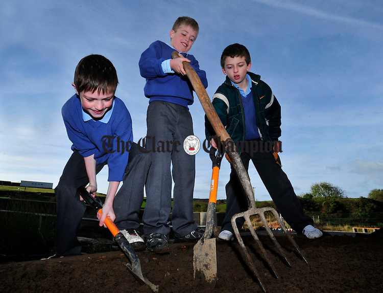 James Leigh, Thomas Mc Govern and Timmy Mc Glennon put their backs into some gardening.