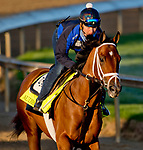 LOUISVILLE, KY - APRIL 30: Audible, trained by Todd Pletcher, exercises in preparation for the Kentucky Derby at Churchill Downs on April 30, 2018 in Louisville, Kentucky. (Photo by John Voorhees/Eclipse Sportswire/Getty Images)