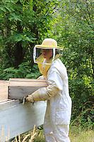 Annette Glokek, in Beaumont in Ardeche, is a professional beekeeper since 5 years ago and owns 300 hives. Annette is not mechanized but she works in collaboration with other beekeepers in exchange for work during the migrations that require exhausting physical effort. ///Annette Glokek, à Beaumont en Ardèche, est professionnelle depuis 5 ans et possède 300 ruches. Annette n'est pas mécanisé mais elle travaille en collaboration avec d'autres apiculteurs en échange de travail pour les transhumances qui nécessite un travail physique éreintant.