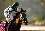 AUGUST 28, 2021:  Flagstaff and Joe Bravo at Del Mar Fairgrounds in Del Mar, California on August 28, 2021. Evers/Eclipse Sportswire/CSM