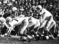 Tobin Rote Toronto Argonauts quarterback 1960. Copyright photograph Ted Grant
