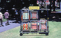 Perth: Free folding chairs in Sopreme Court Gardens. Photo '82.