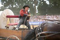 Yannick GICQUEL, spectacle equestre