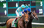 ELMONT, NY - OCTOBER 08: Lady Eli #5, ridden by Irad Ortiz Jr., coming across the finish to win the 39th Running of The Flower Bowl, on Jockey Club Gold Cup Day at Belmont Park on October 8, 2016 in Elmont, New York. (Photo by Douglas DeFelice/Eclipse Sportswire/Getty Images)