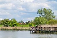 Bohlenweg am Mühlensee bei Vehlefanz, Oberkrämer, Oberhavel, Havelland, Brandenburg, Deutschland