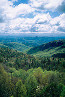 Lost Creek Cove<br />   from the Blue Ridge Parkway<br />   near Lost Creek Cove Overlook<br /> Blue Ridge Mountains,  North Carolina