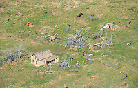 Ghost ranch ruins, southeastern Colorado.  Sept 2013. 84022
