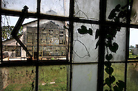 An abandonded factory building  is seen through the windows of another in Fordlandia, a former factory town created by the Ford Motor Company on the banks of the Tapajós River, September 6, 2005.Deep in the Amazon forest, 12 hours by boat from the regional capital of Santarem in Brazil's Pará state, the rubber plantation and processing factory is now abandoned to the rain-forest, an aging memorial to American ideals and to the Brazilian reality. It almost seems like time has stopped in Fordlandia, or better yet, time has passed it by. In typical american style, it was organized and efficient, an idea admired by many Brazilians, and perhaps more so by residents of the untamed Amazon. But It is an idea hard to implement in the wilds of the amazon. Some might also say that it is also a typical American style the way Ford came here and tried to implement something with little knowledge of the local customs or terrain. From 1928 to 1945, Ford came tried to take control of his rubber supply, one of the most important products of the rainforest. After only 17 years the company admitted defeat and retreated from the forest.