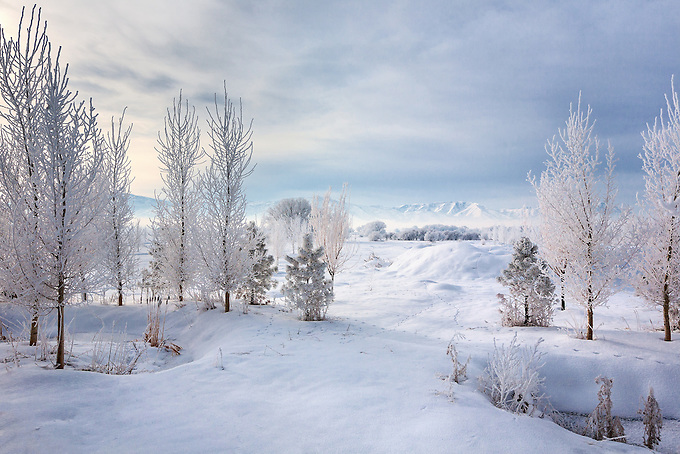 A frosty morning in the valleys of northern Utah.