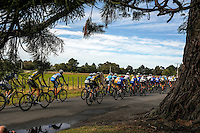 Riders race down Skeets Rd during stage five of the NZ Cycle Classic UCI Oceania Tour in Wairarapa, New Zealand on Tuesday, 26 January 2017. Photo: Dave Lintott / lintottphoto.co.nz
