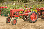 1940's McCormick Farmall Cub Tractor. Summer Hill Nursery.