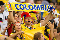 Columbia fan with fancy dress and face paint