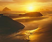 Sunset on the Oregon Coast; Bandon State Park, OR