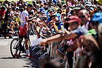 Anthony Perez (FRA) Cofidis with fans at sign on before Stage 5 of the 2019 Tour de France running 175.5km from Saint-Die-des-Vosges to Colmar, France. 10th July 2019.<br /> Picture: ASO/Pauline Ballet | Cyclefile<br /> All photos usage must carry mandatory copyright credit (© Cyclefile | ASO/Pauline Ballet)