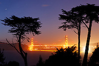 Golden Gate Bridge framed by trees from Lincoln Park, Golden Gate National Recreation Area, San Francisco, California, USA, North America