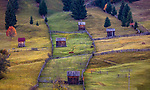 Romania, Bucovina, farmland